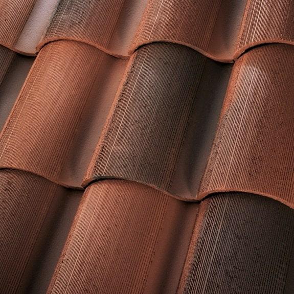 1 Piece S Tile - Rustic Newport