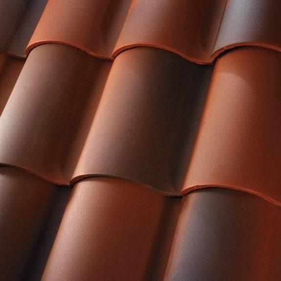1 Piece S Tile - Newport Blend